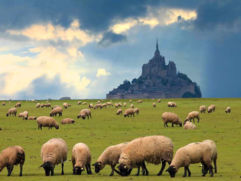 Mont Saint Michel Photo